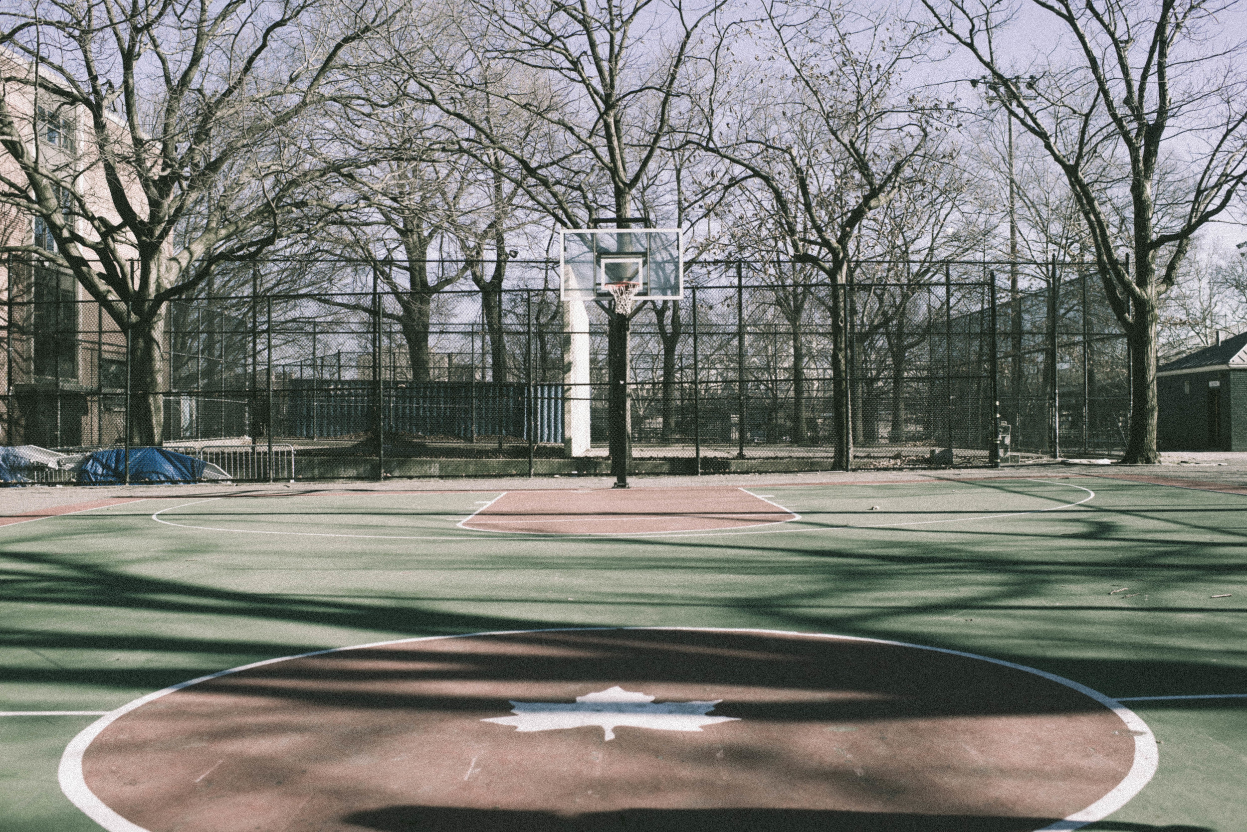 Harlem-1.jpg