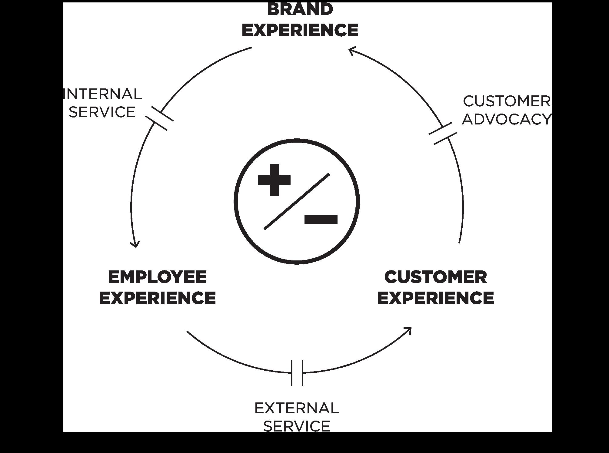 Experience Loop