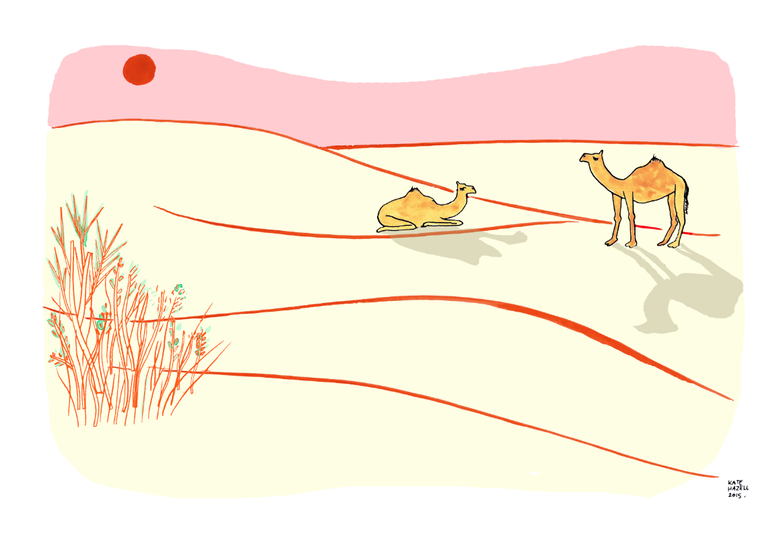 Camel Trekking in the Thar Desert