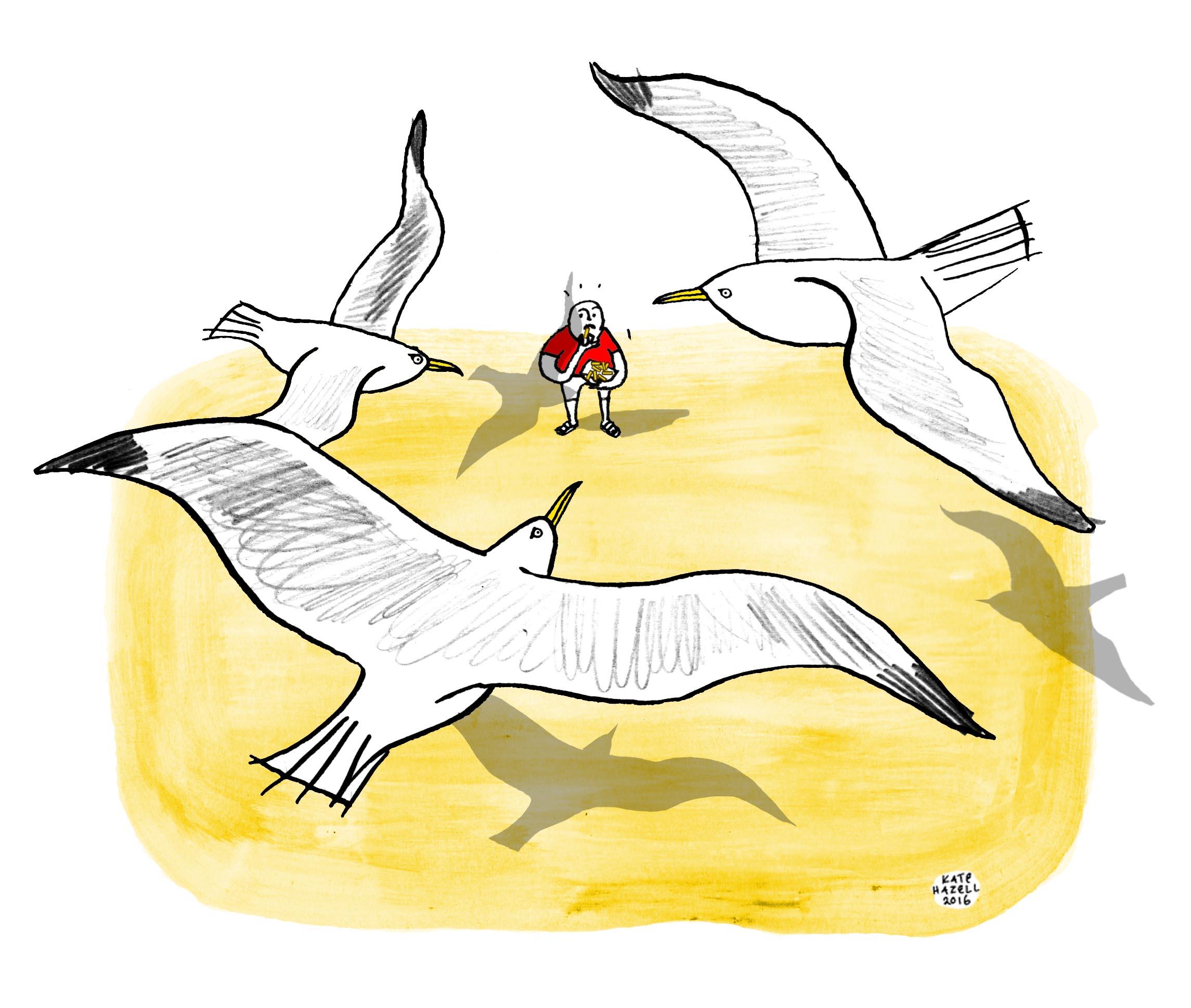 Chips Vs Seagulls