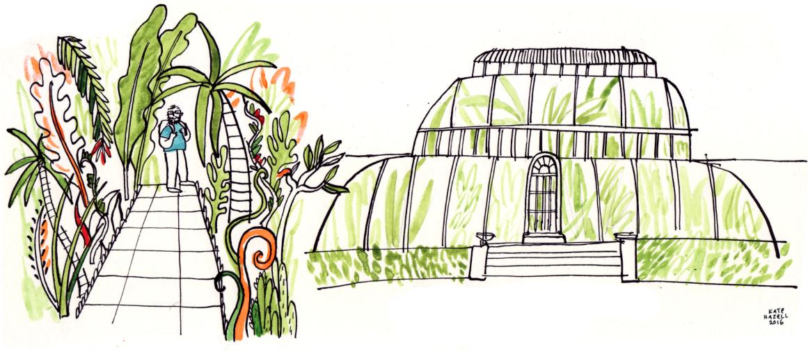 Kew Gardens Palm House London