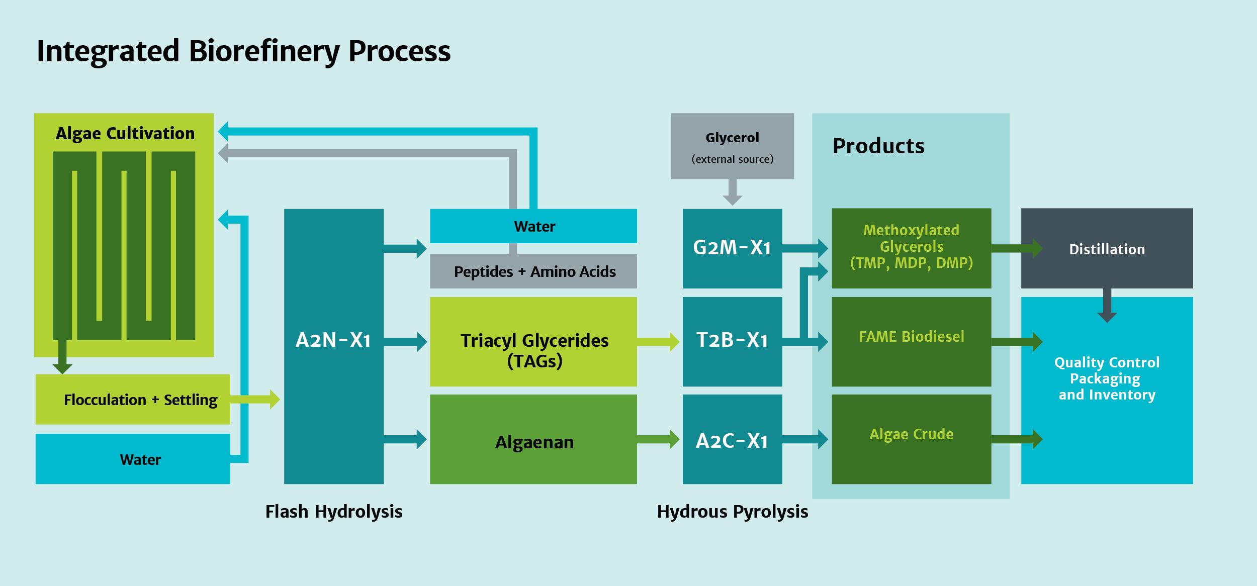 ALG_Diagram.png
