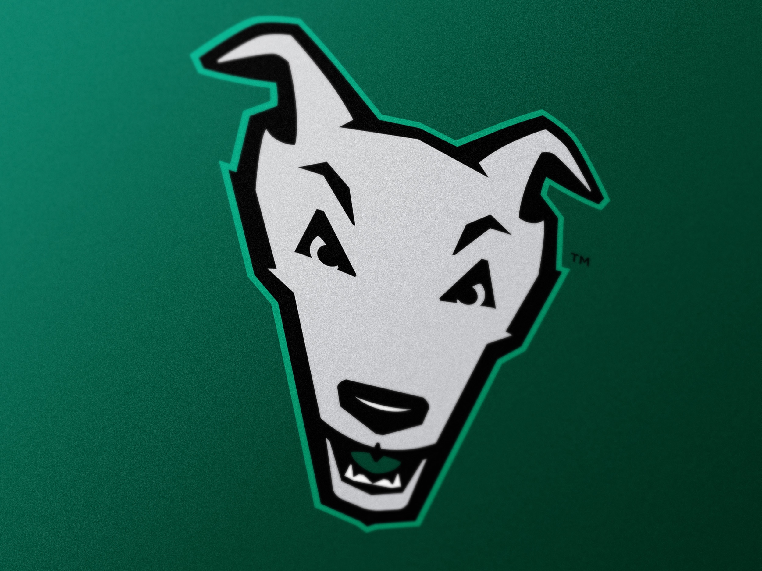 Loyola Greyhounds - Athletics Brand Identity