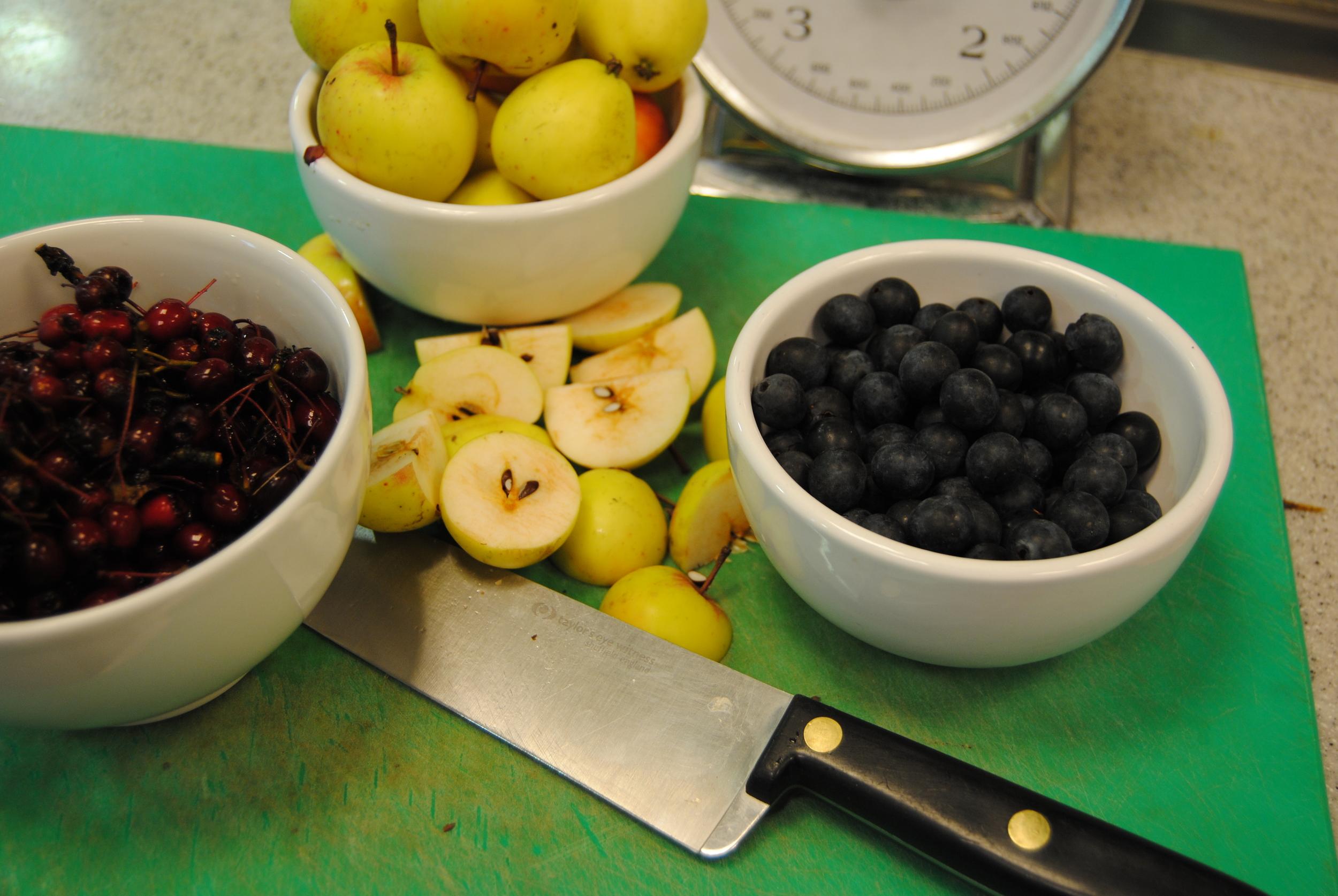 hedgrerowjellyingredients.jpg