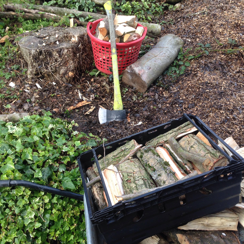PJ taste sustainable wood