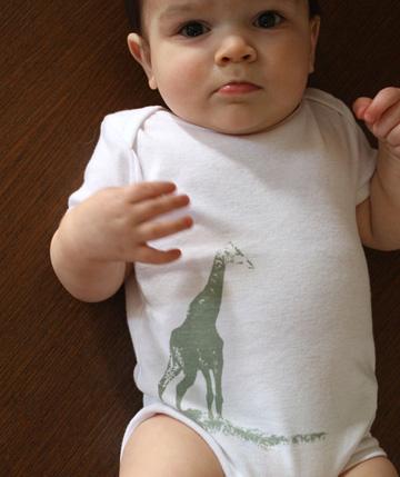 giraffe_2.jpg