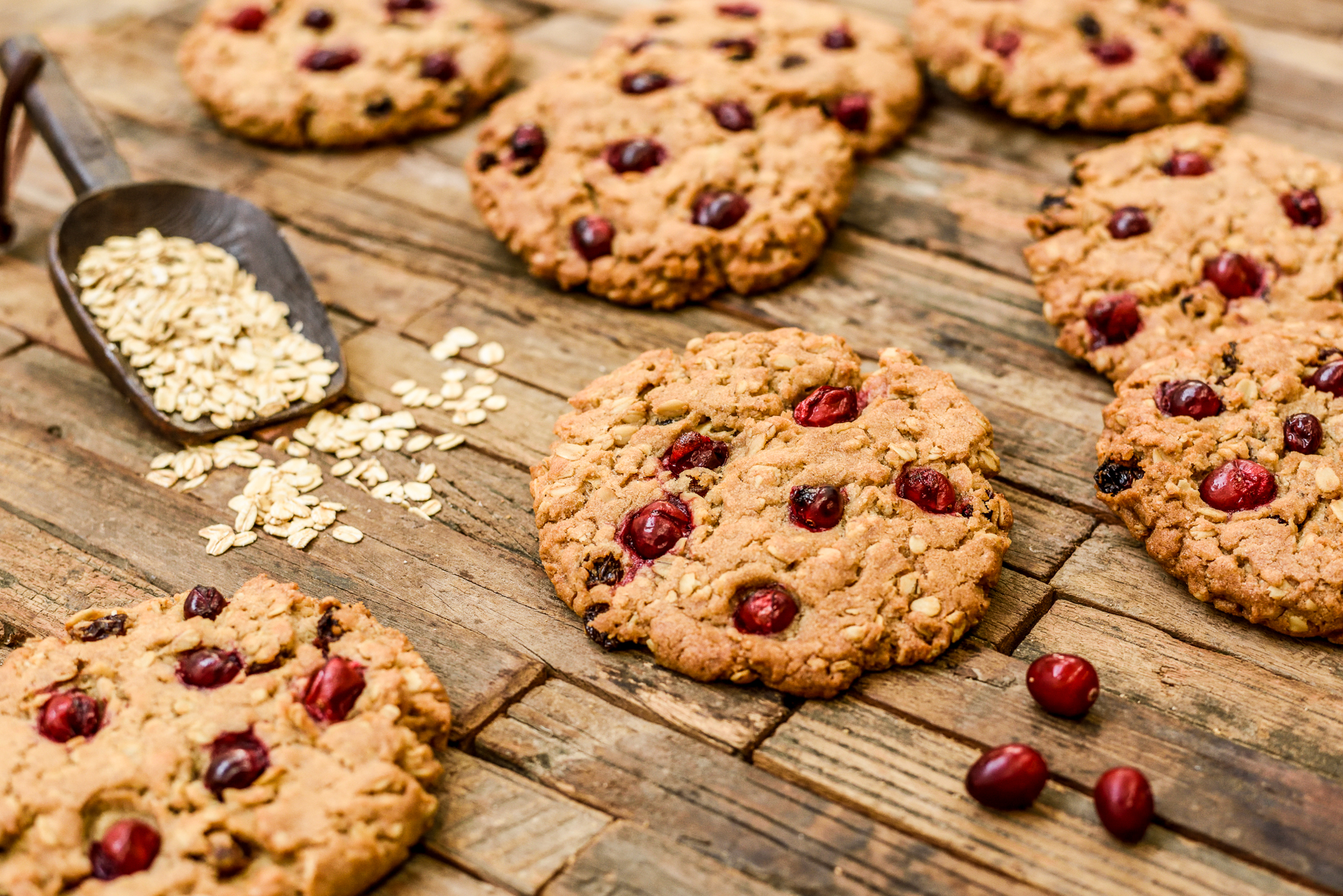 Copy of Oatmeal Cranberry Cookie