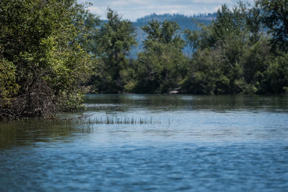 Saint Joe River, Idaho