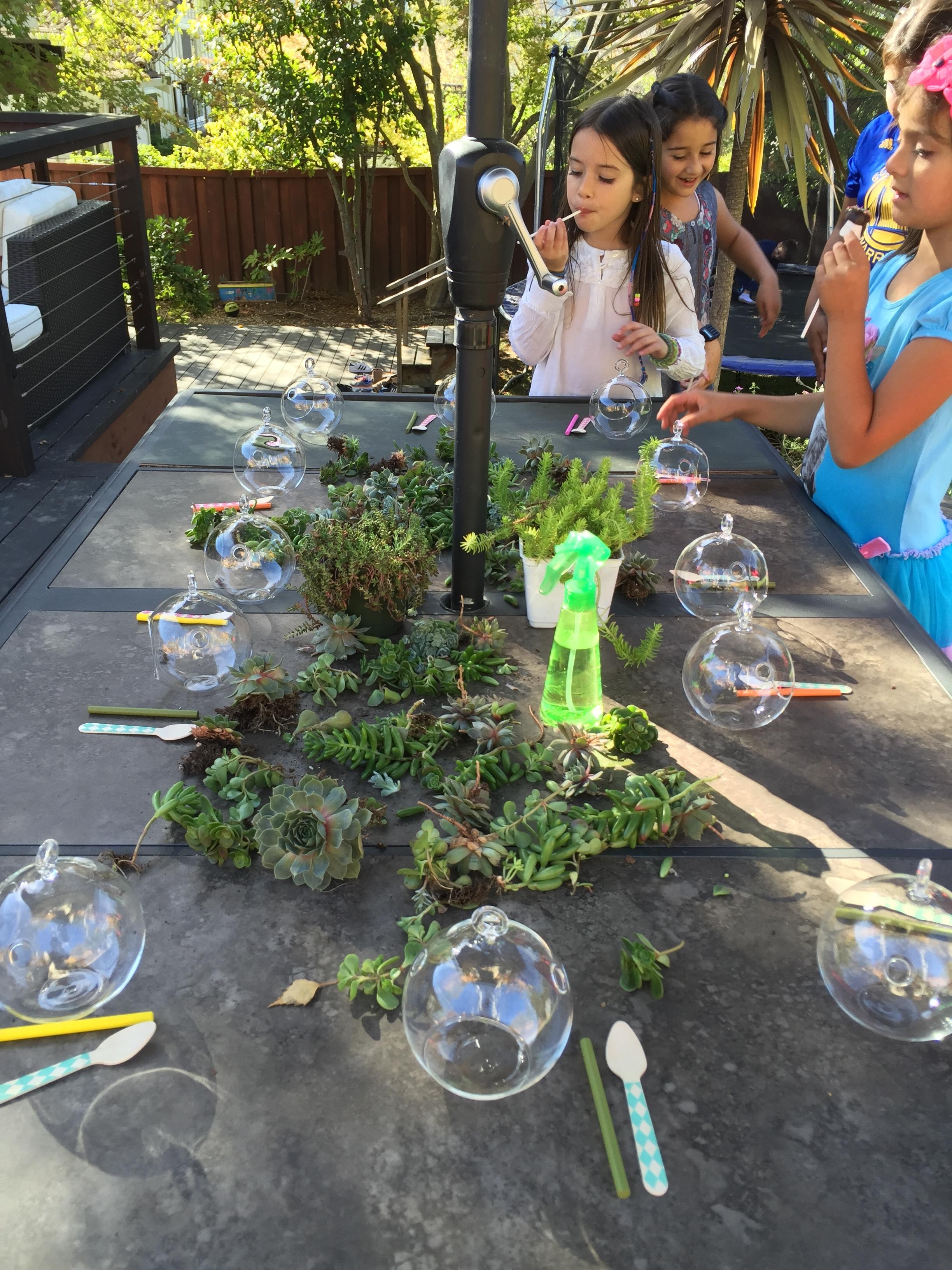 kids fun party favors succulent terrarium setup.jpg