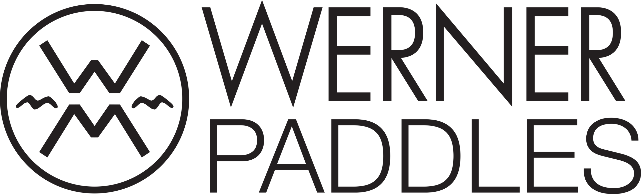 Family-Logo-WERNER-PADDLES-Side-Stacked-Black.png