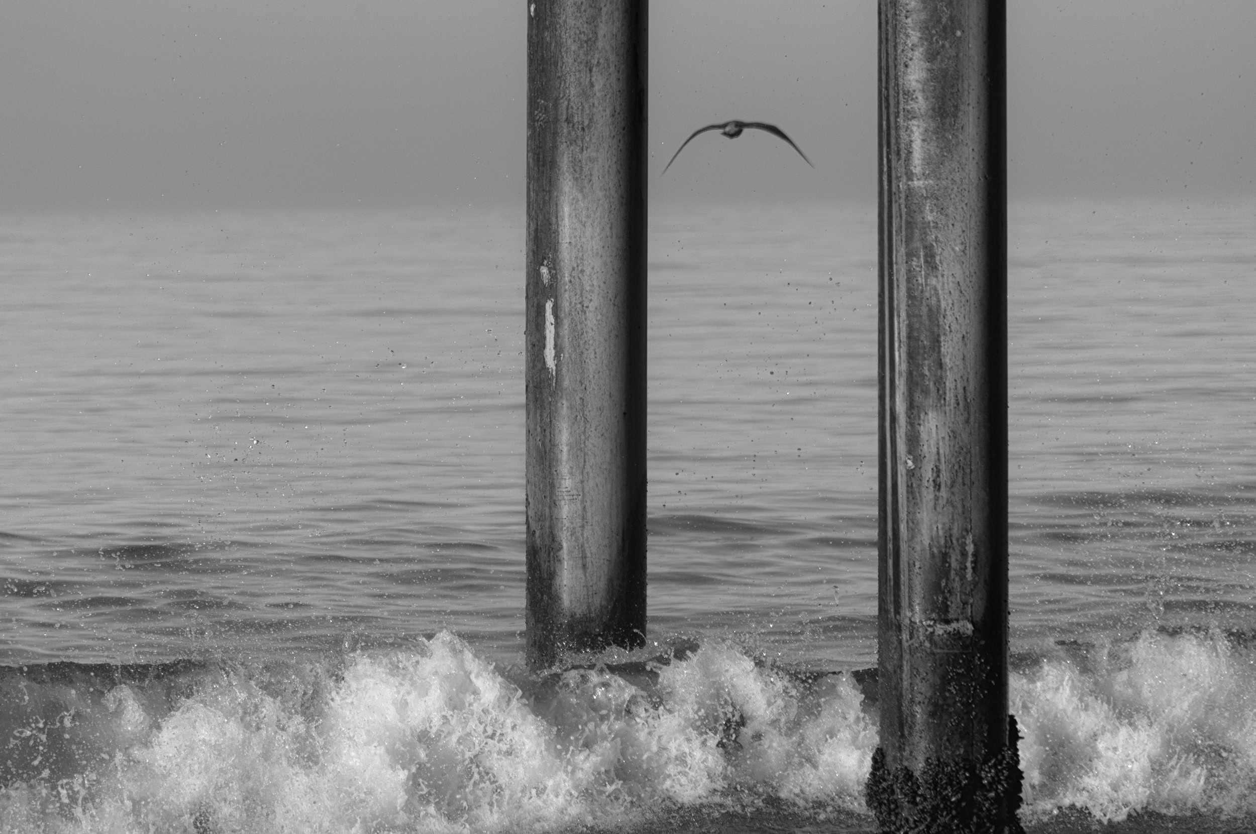 Santa Monica pier early in the morning