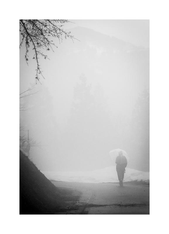 Evening walk (0527).jpg
