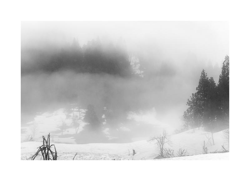 End of winter (0506).jpg