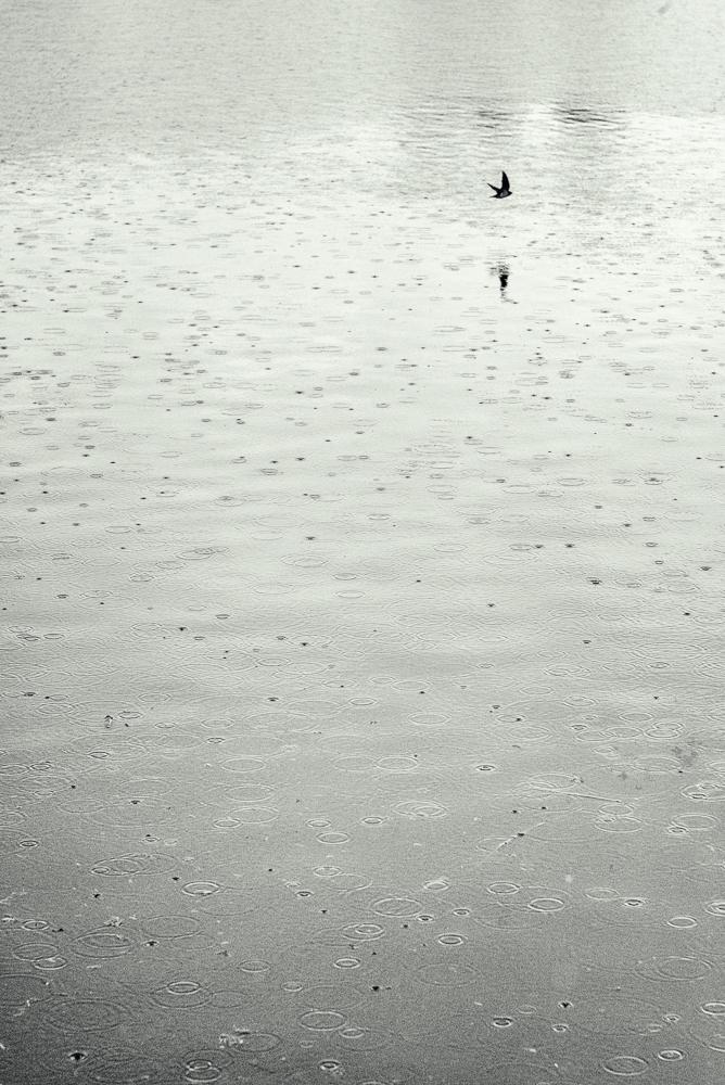 solitude by Amy Kanka Valadarsky