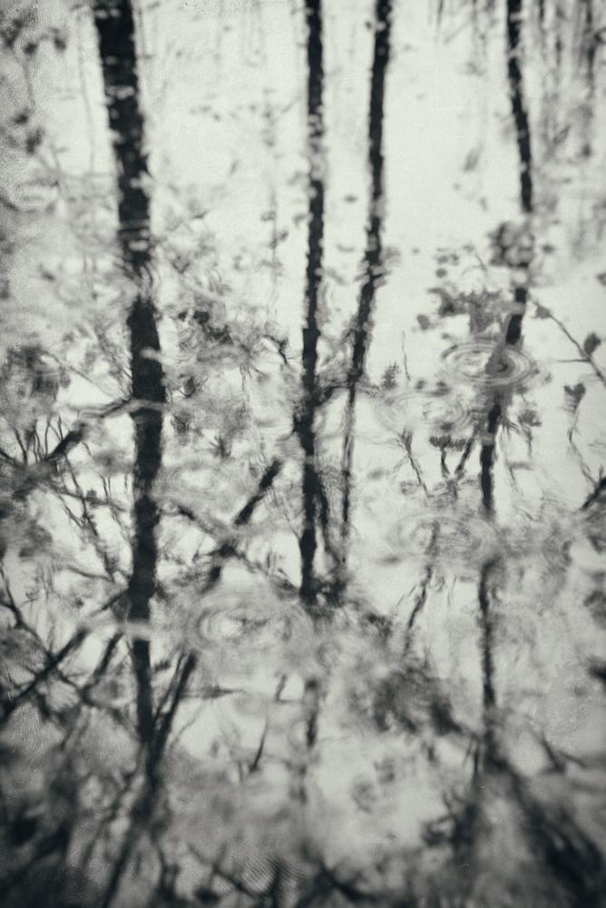 Rainy day by Amy Kanka Valadarsky