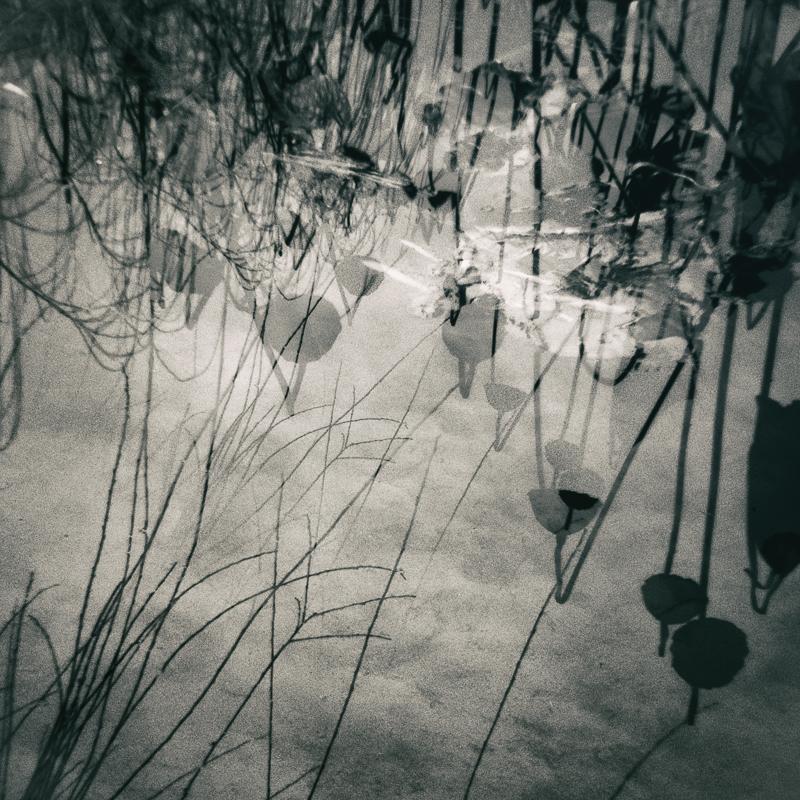 mistyhaven 28 by Amy Kanka Valadarsky