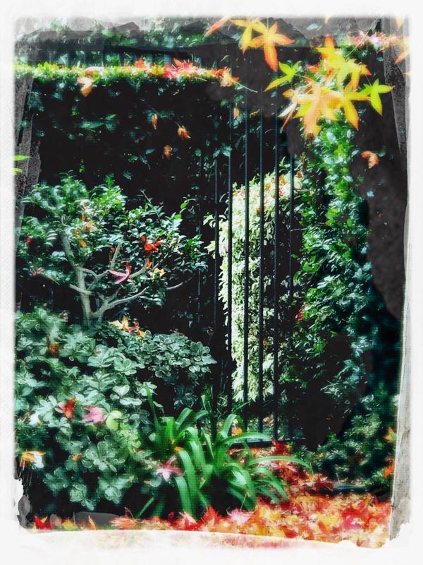 A hidden gate