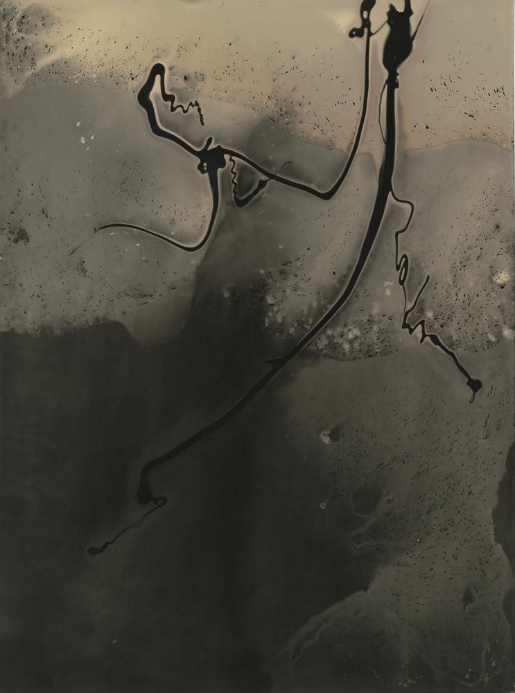 Apeiron-4 - Chemigram by Amy Kanka Valadarsky