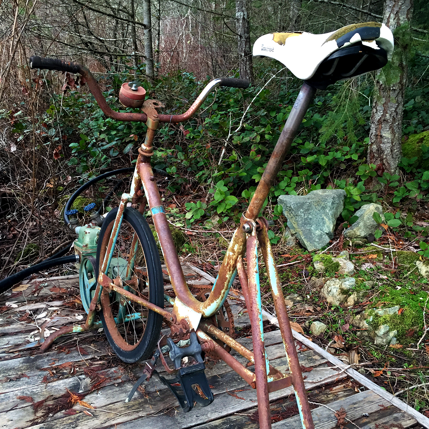 Aside from its natural beauty, the property has many characteristics that add to its charm. Like this 30-year-old exercise bike, which is used to pump water from the lake into the cabin by turning the pedals.