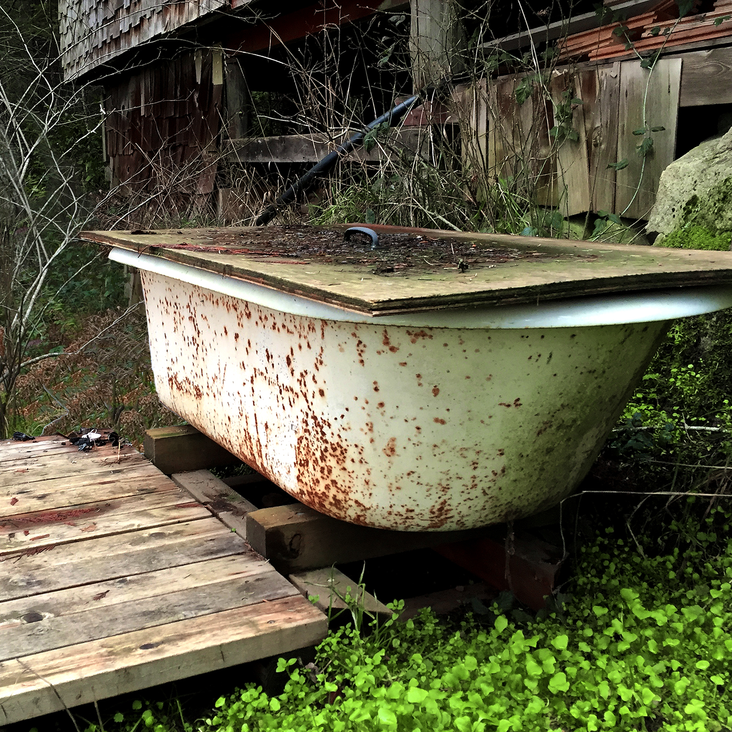 In the winter time, when the lake is too cold for a dip, water can be pumped into this wood-fired bathtub and you can have hot soak under the trees and the stars.