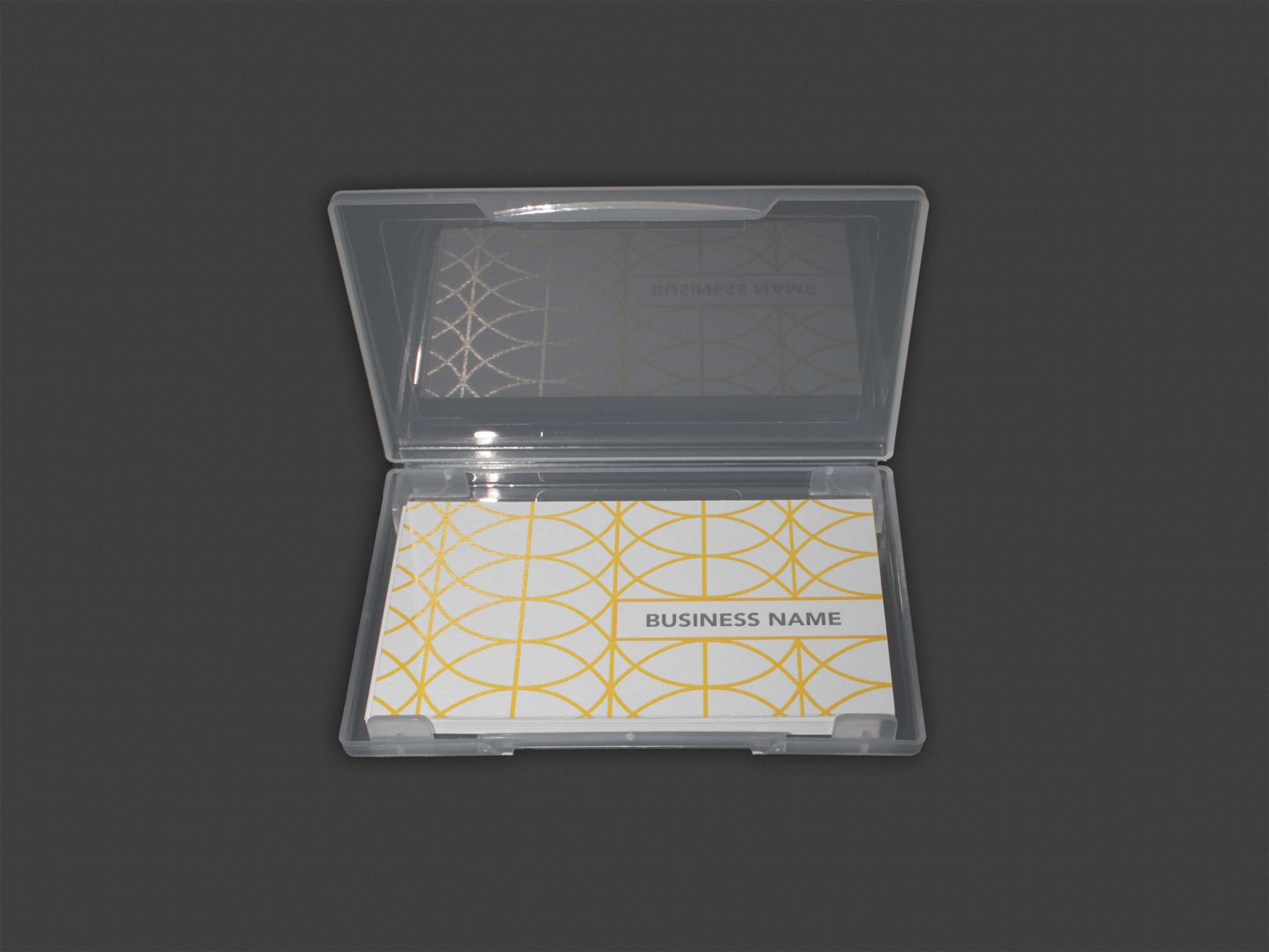 15 Card Plastic Carrying Case | TRANSPARENT