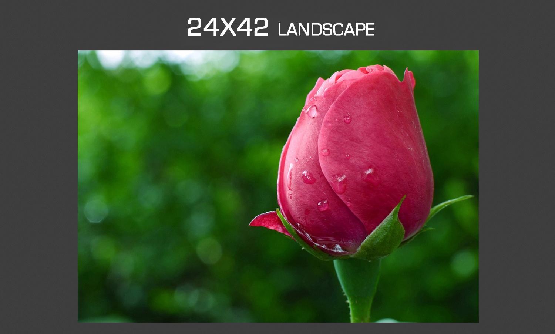 photo_mockup_largest.jpg