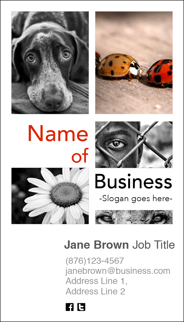 Business Cards Vertical2.jpg