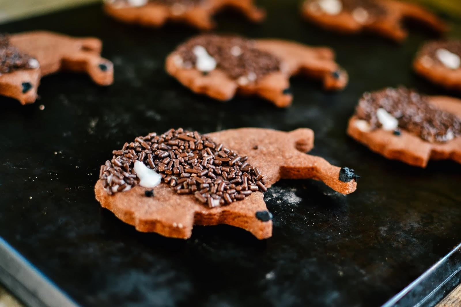 bison+cookies-3.jpg