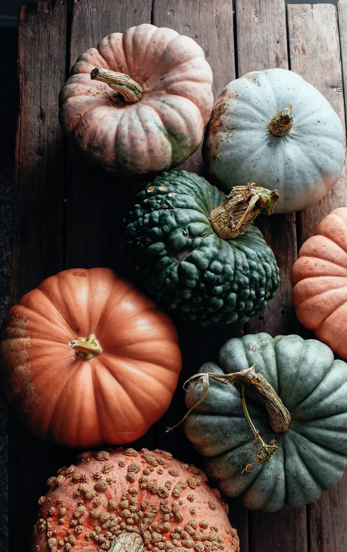 pumpkinpuree_thefarmersdaughter-13.jpg