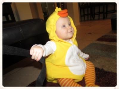 Quack quack, I'm adorable.