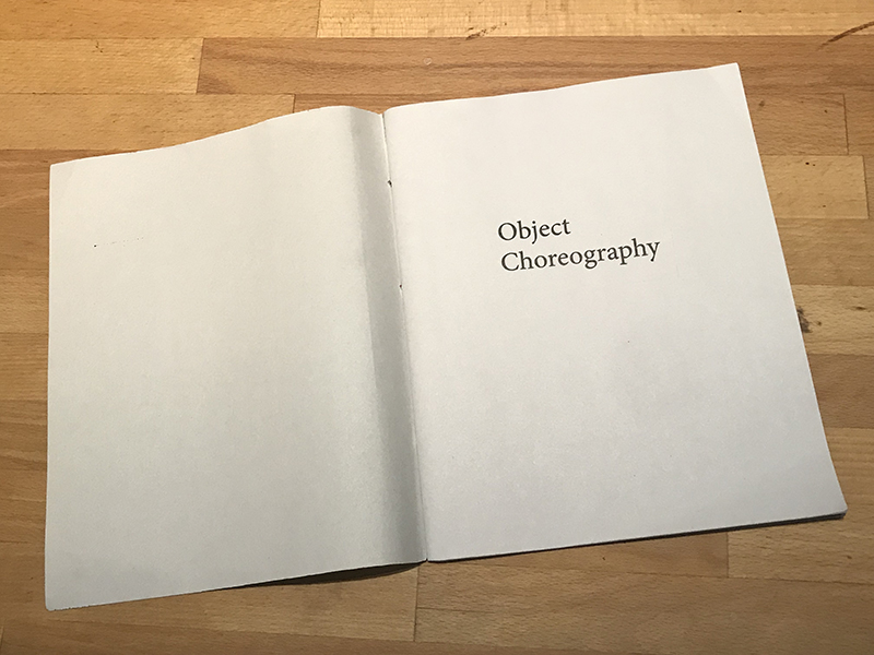 SamMargevicius_GREENzinefairCCNY_ObjectChoreography5.jpg