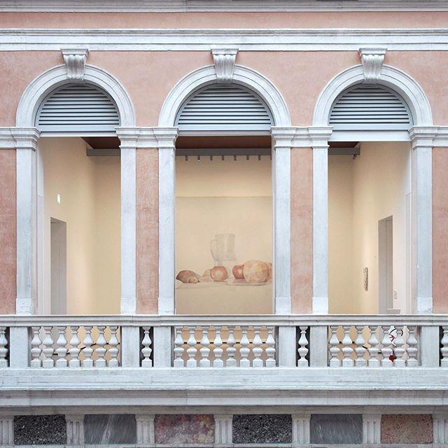 @palazzo_grassi #colorindex #venice