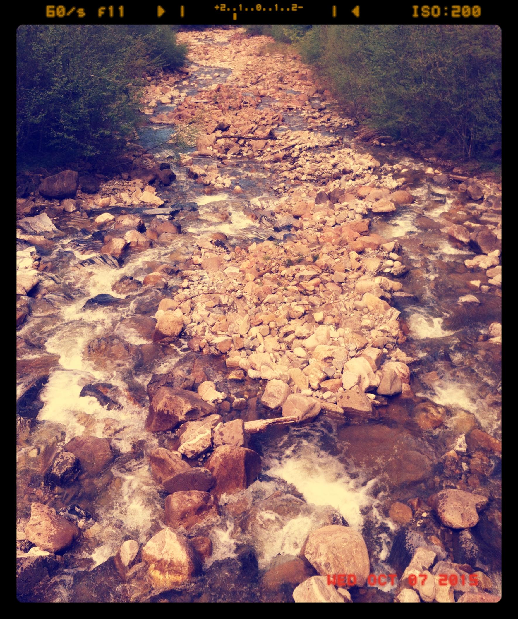 River_Schwarzwasser_on_a_calm_day
