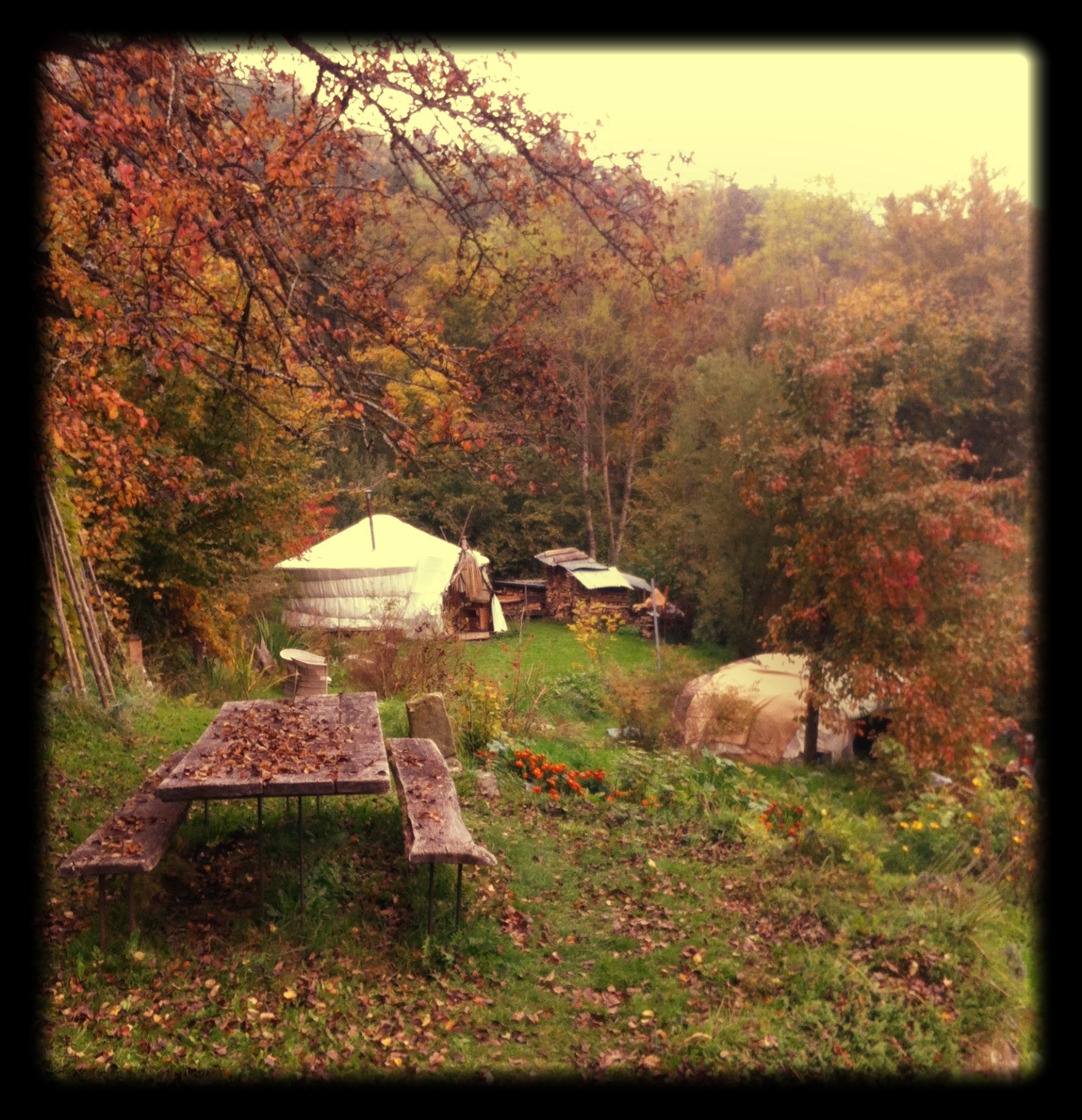 Autumn_colour_a_yurt_a_picnic_table_a_sweatlodge