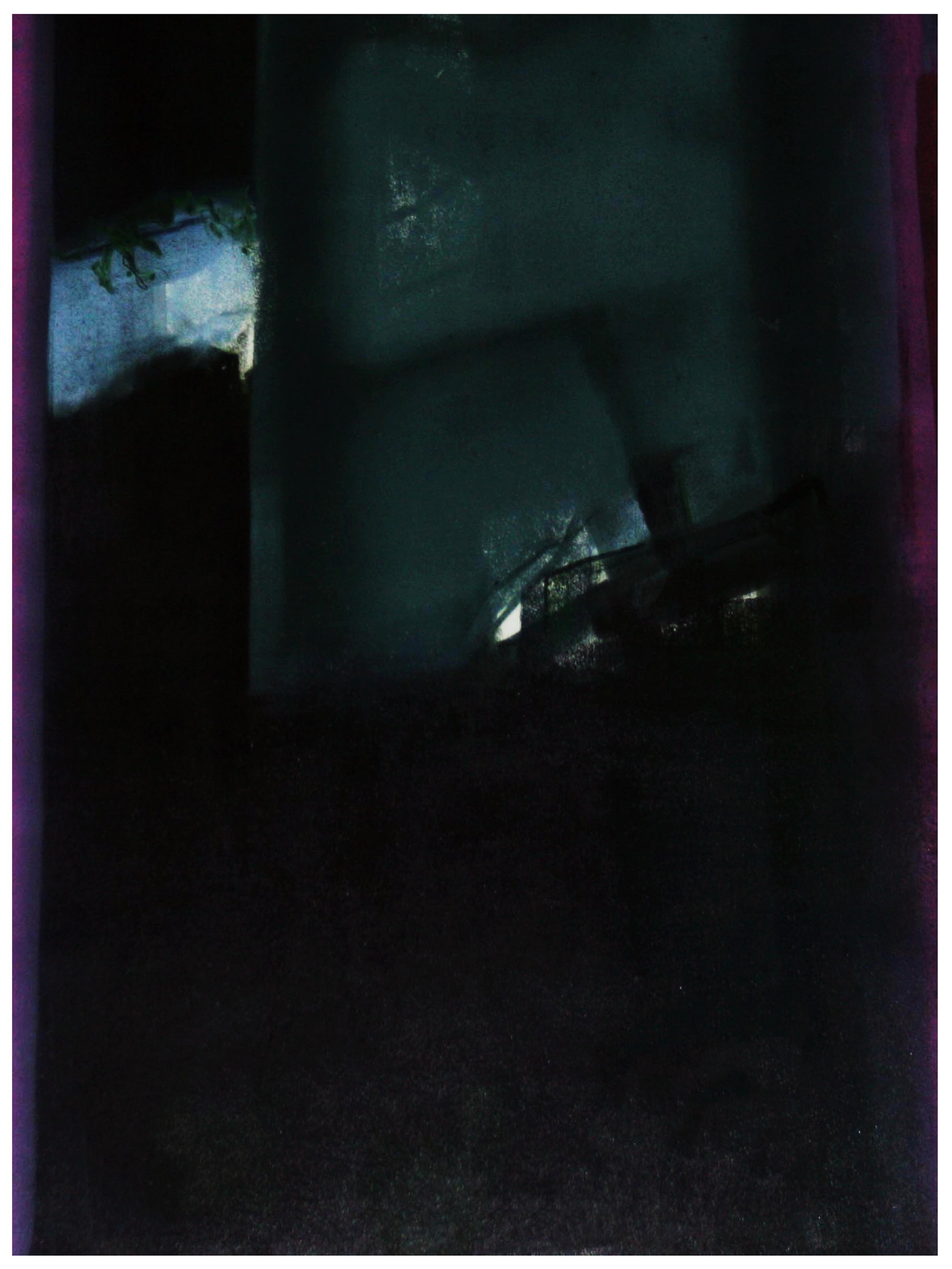 Vol de nuit Monoprint 81cm x 61cm