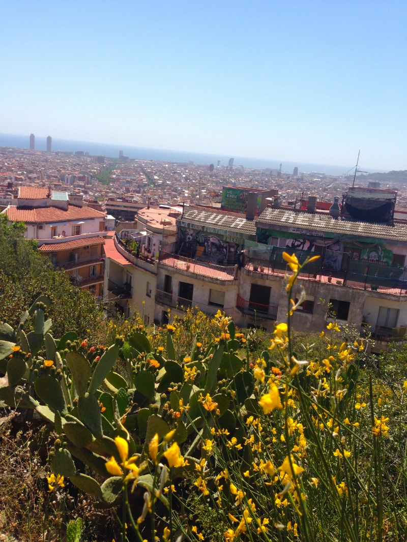 Parc Guell city views