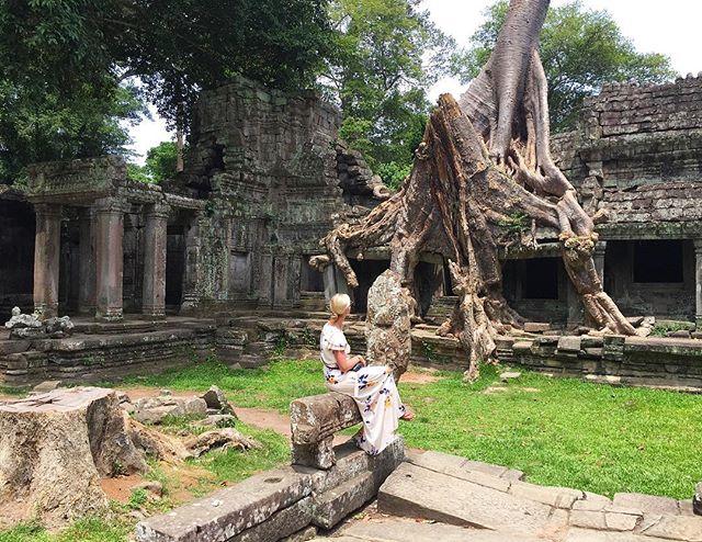C A M B O D I A 🙏 #angkorwat #taprohmtemple #cambodia #seasia #cambodiatrip