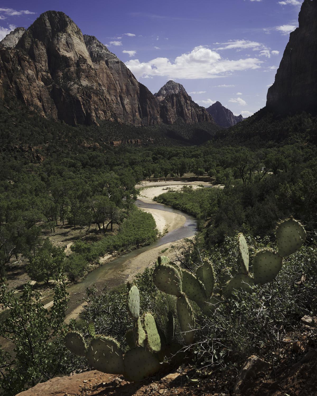 Zion Valley.jpg