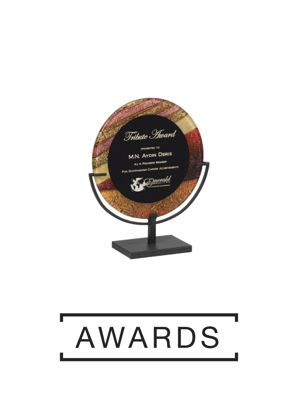 awards button.jpg