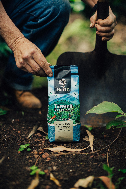 britt tarrazu coffee