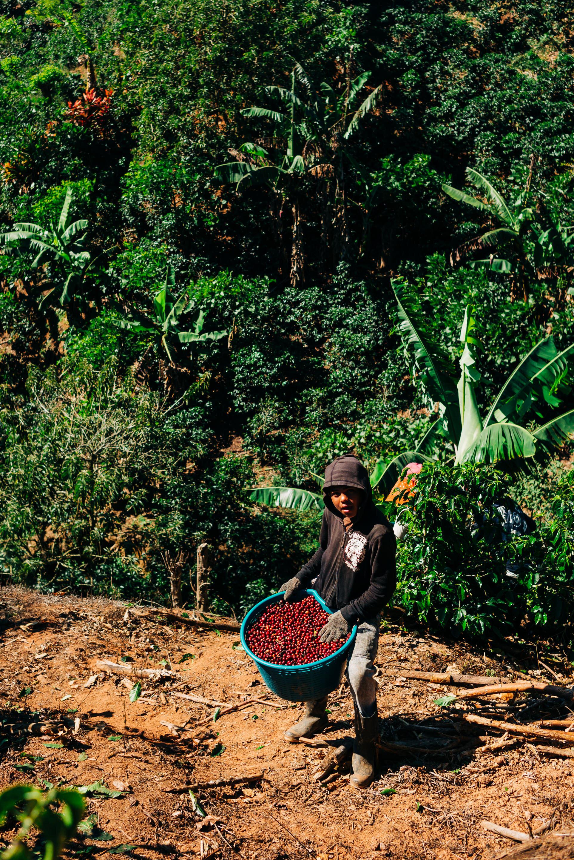 photojournalism-costa-rica-4.JPG
