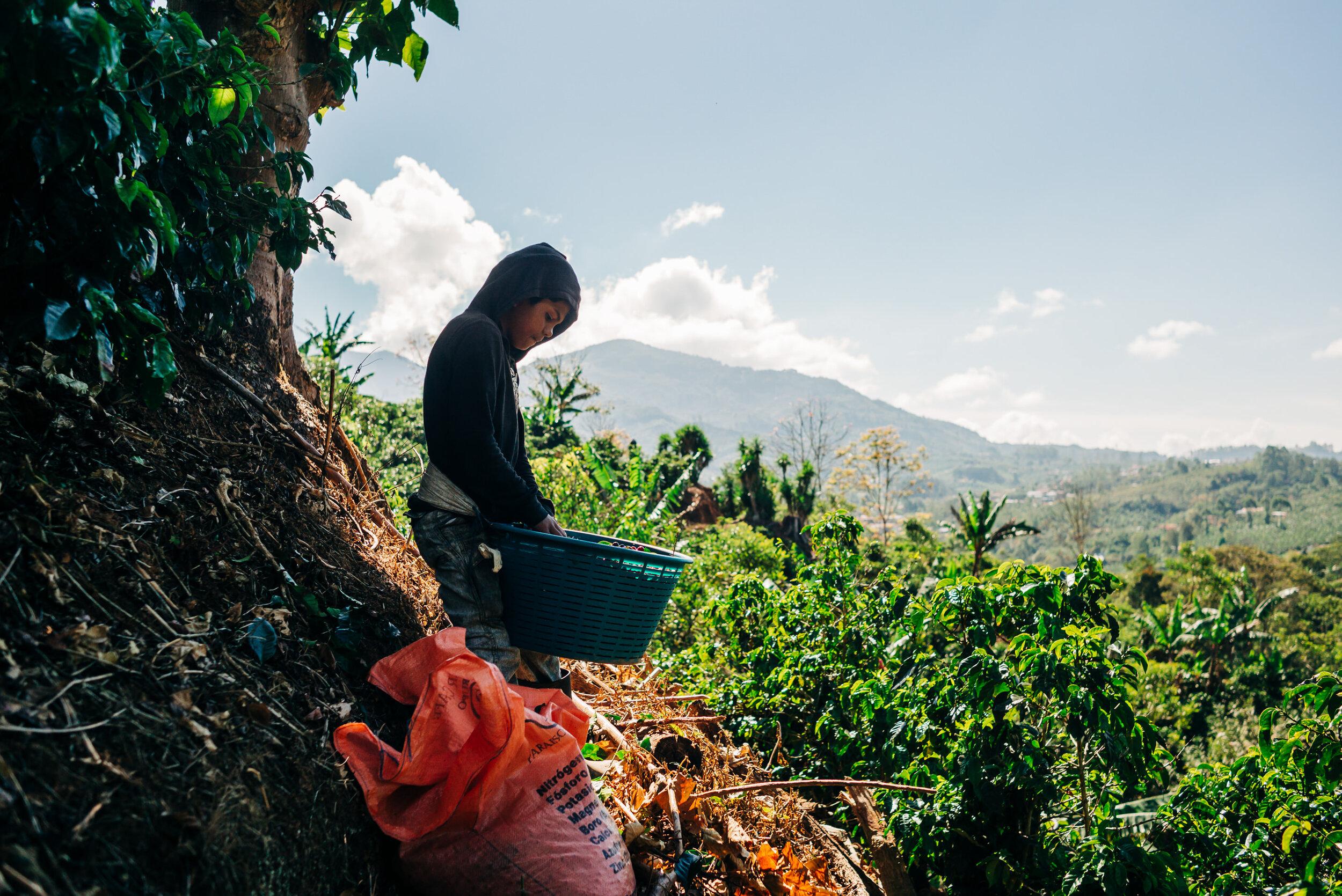 photojournalism-costa-rica-5.JPG