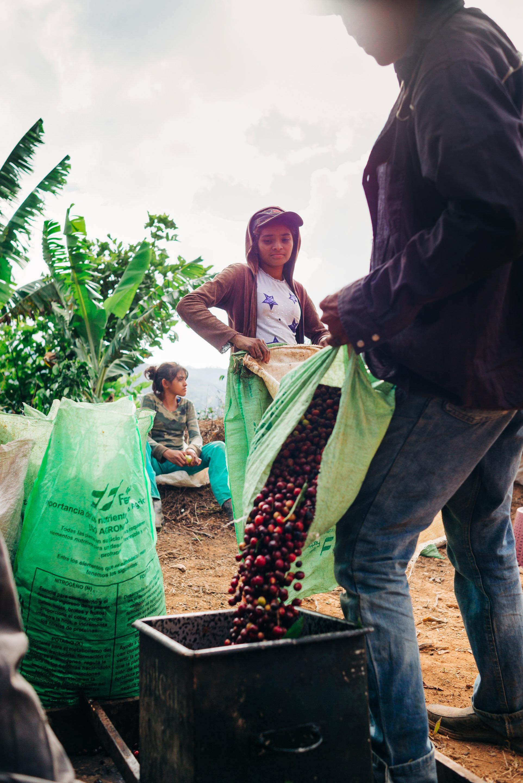 photojournalism-costa-rica-11.JPG