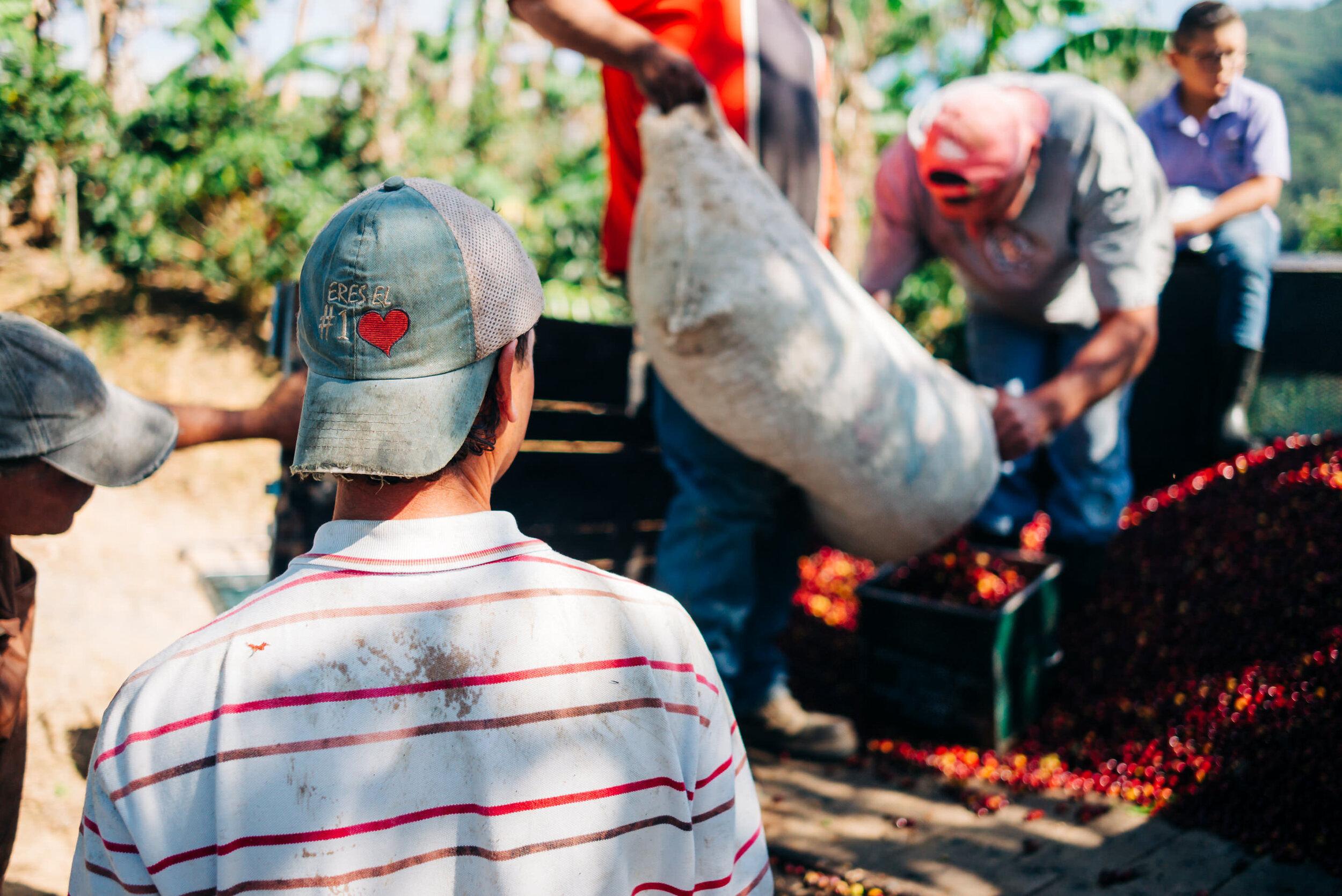 photojournalism-costa-rica-35.JPG