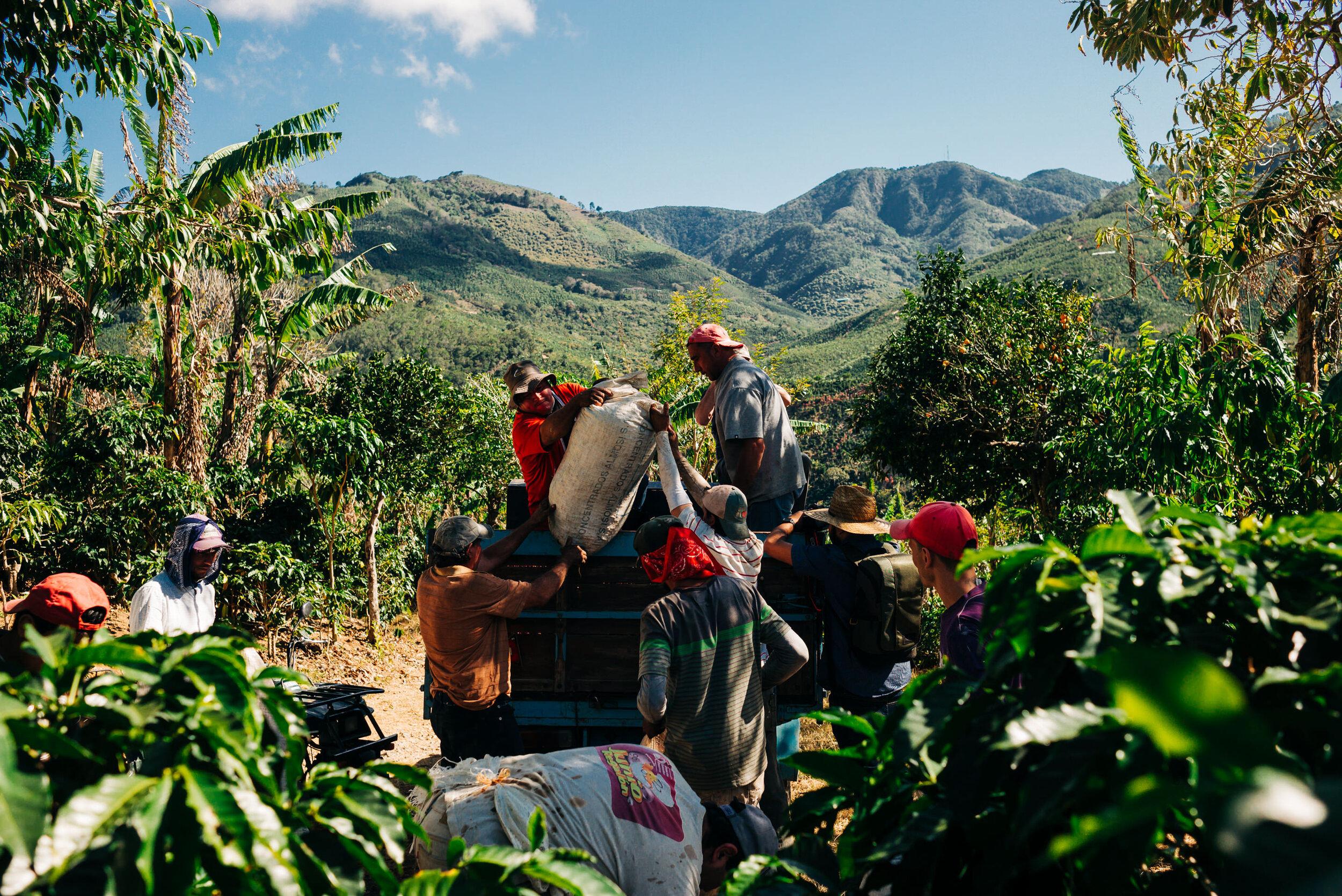 photojournalism-costa-rica-36.JPG