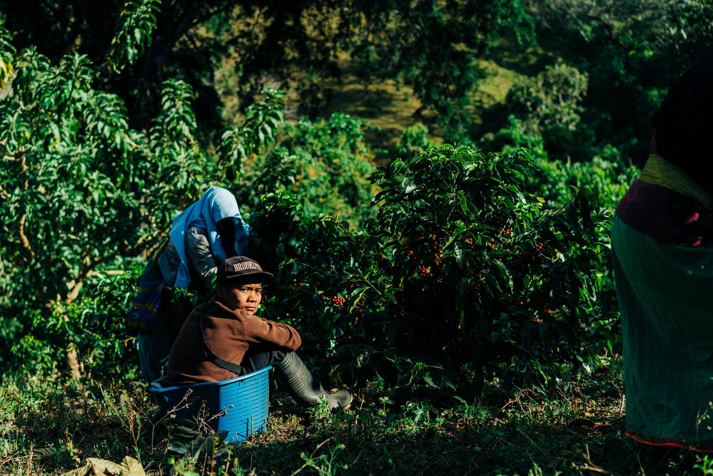 photojournalism-costa-rica-39.JPG