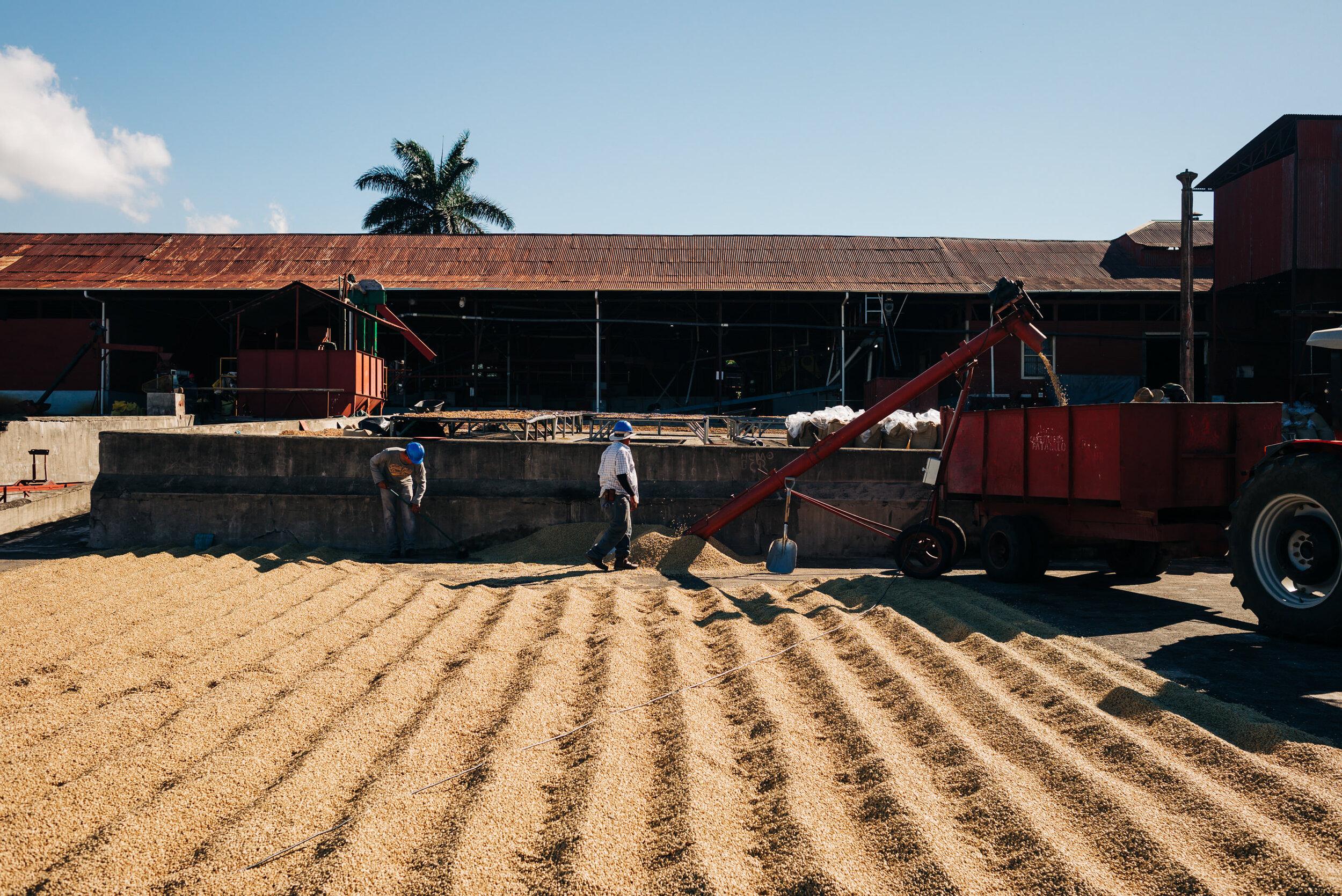 photojournalism-costa-rica-47.JPG