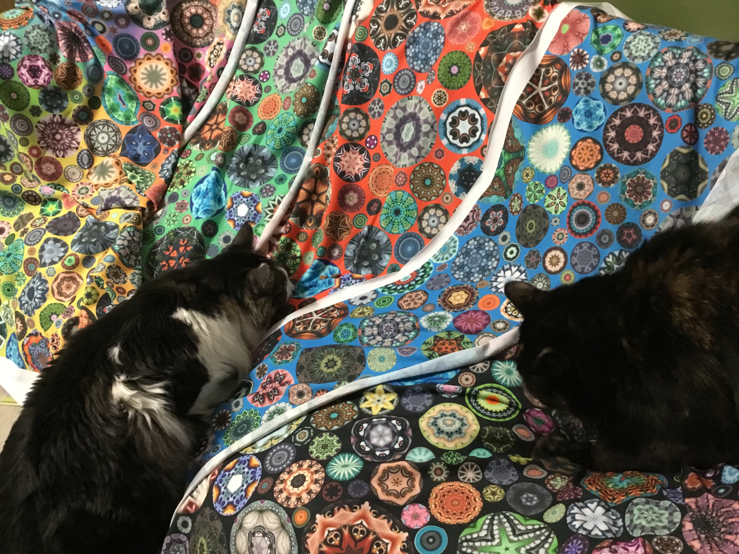 Five samples of  my designs on Spoonflower  in Modern Jersey fabric. The cats are excited!