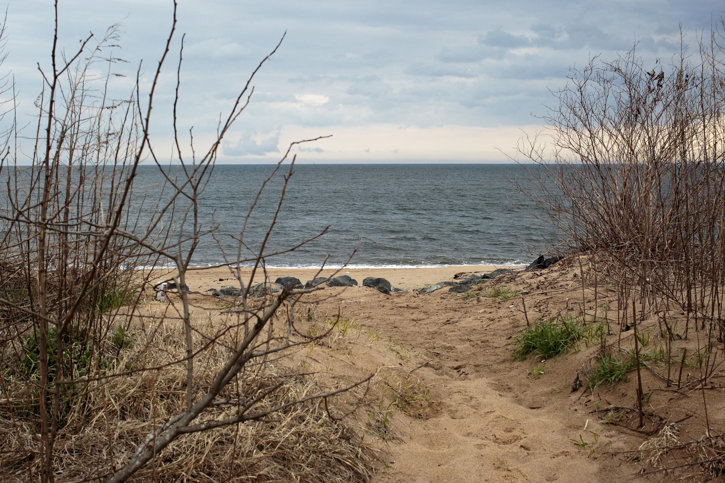 Fox_Beach_-15.jpg