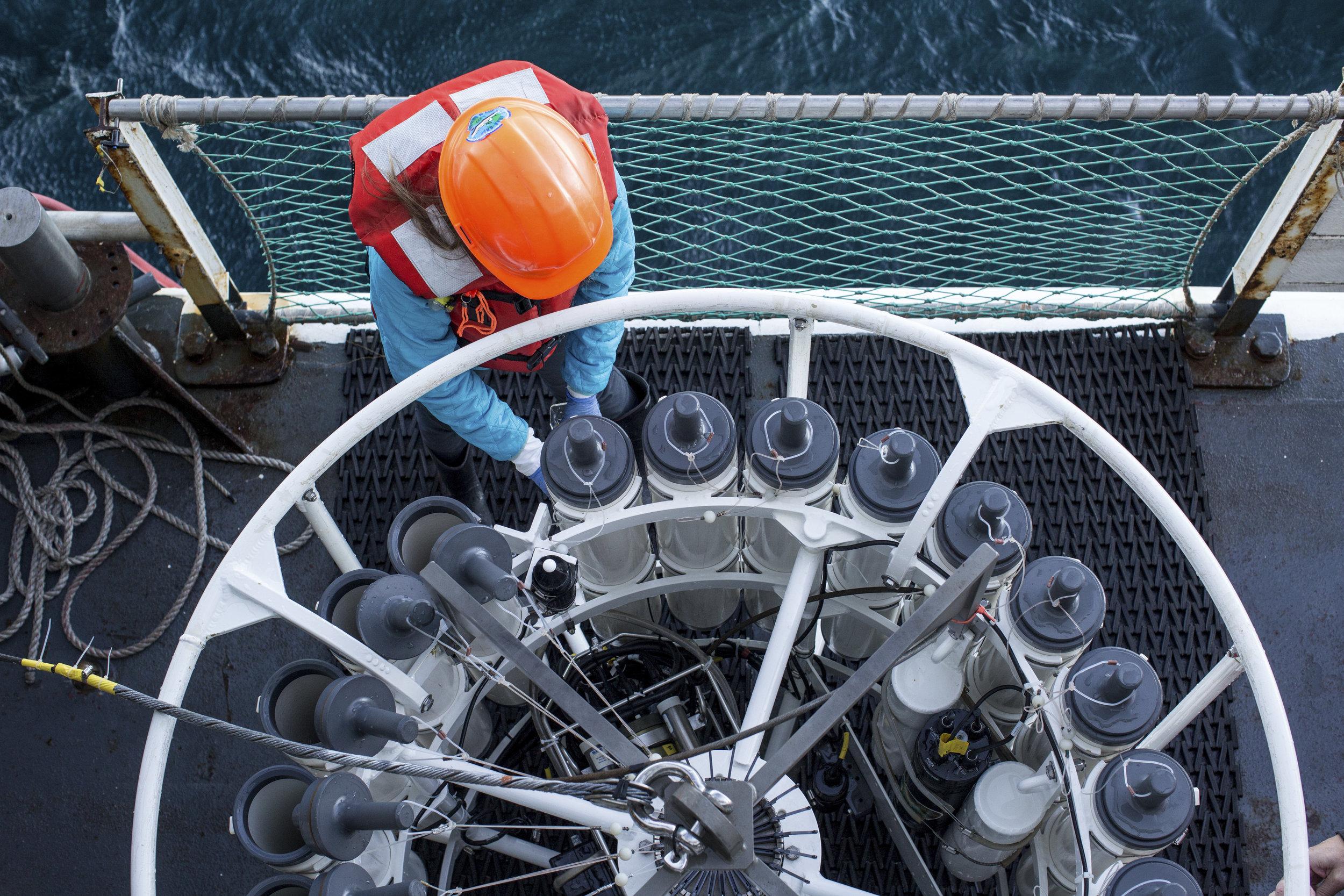 The California Cooperative Oceanic Fisheries Investigations -